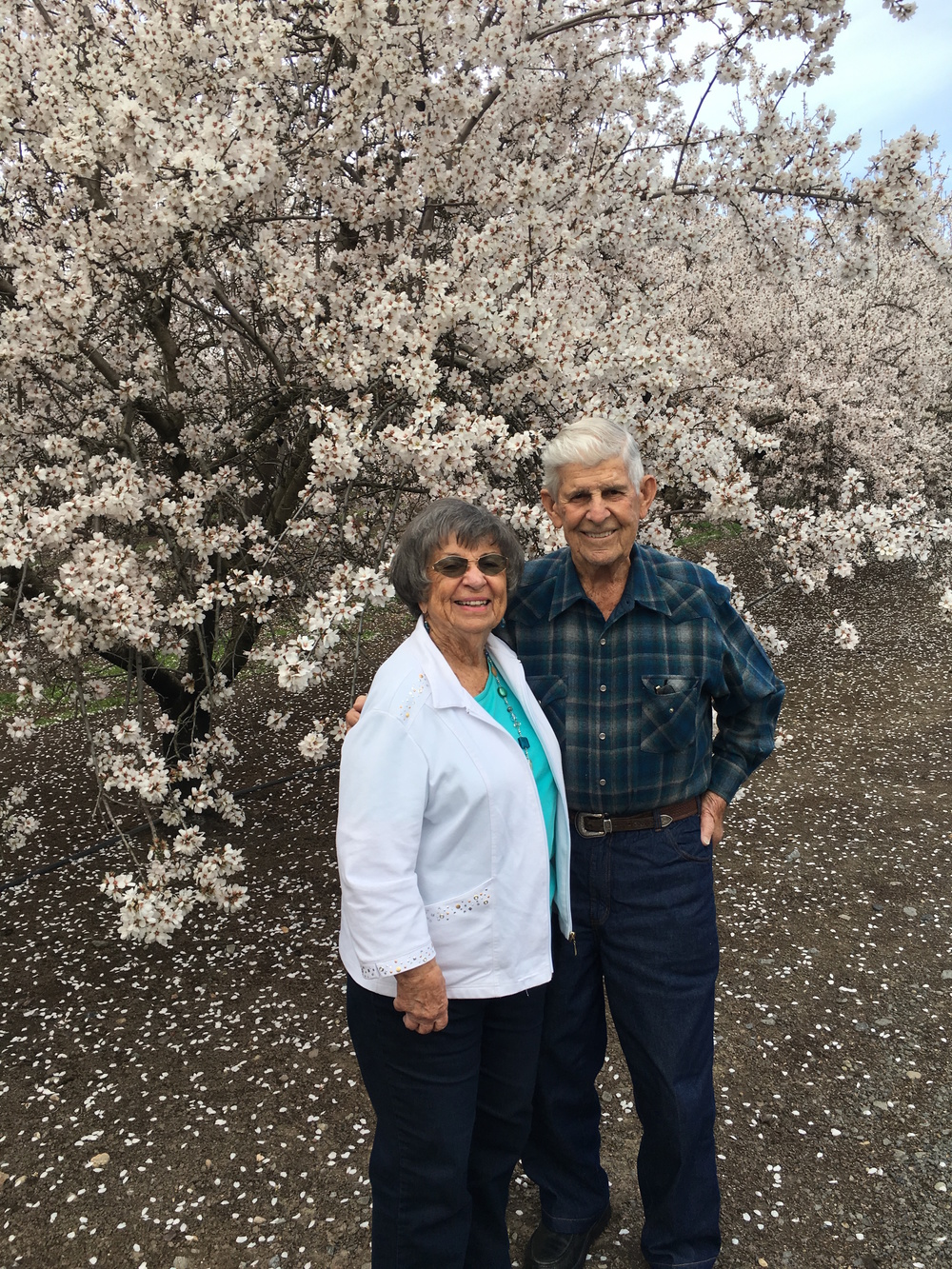 Norman and Freda Lucas are the founders of Lucas Dairy, the base of all of our farming operations.  Their lifetime work will be honored in December as they have been elected to the Stanislaus County Ag Hall of Fame.  We are very proud of all they have achieved and hope to continue their devotion to the agriculture community.