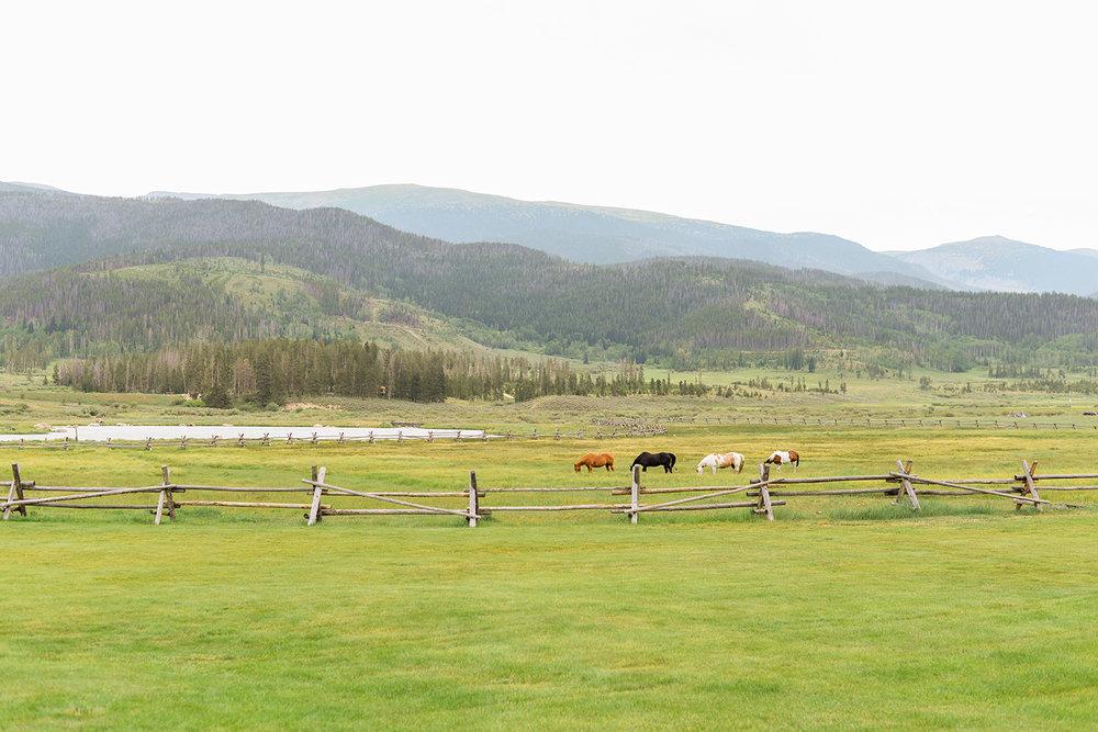 colorado-mountain-wedding-photographer-devils-thumb-ranch-wedding-n-k-2.jpg