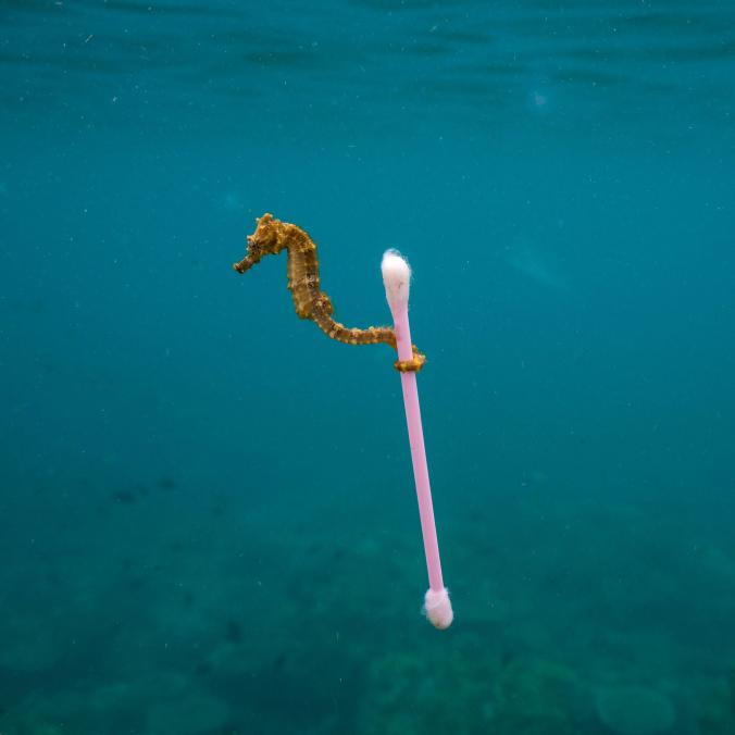 Source:  National Geographic