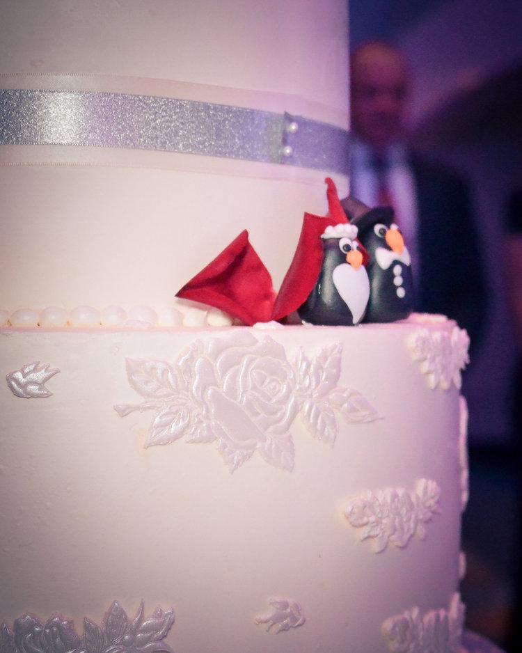 Ashleigh+Joe+Wedding+Cake+Penguin.jpg