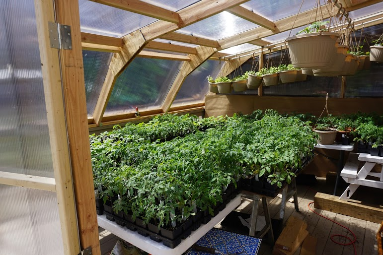 greenhouse1.jpeg