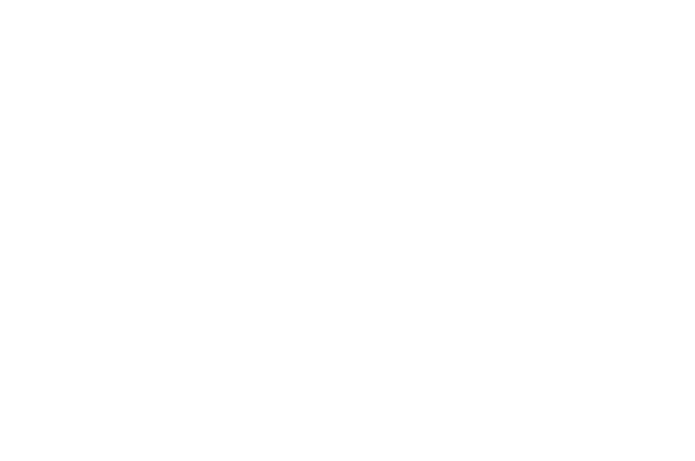 OFFICIAL SELECTION - Black Film Festival of New Orleans - 2018.png