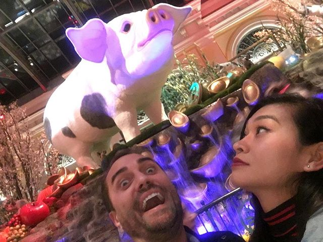 It's the year of the pig ya'll. We are ready for that good fortune and luck 🥳 #lunarnewyear2019