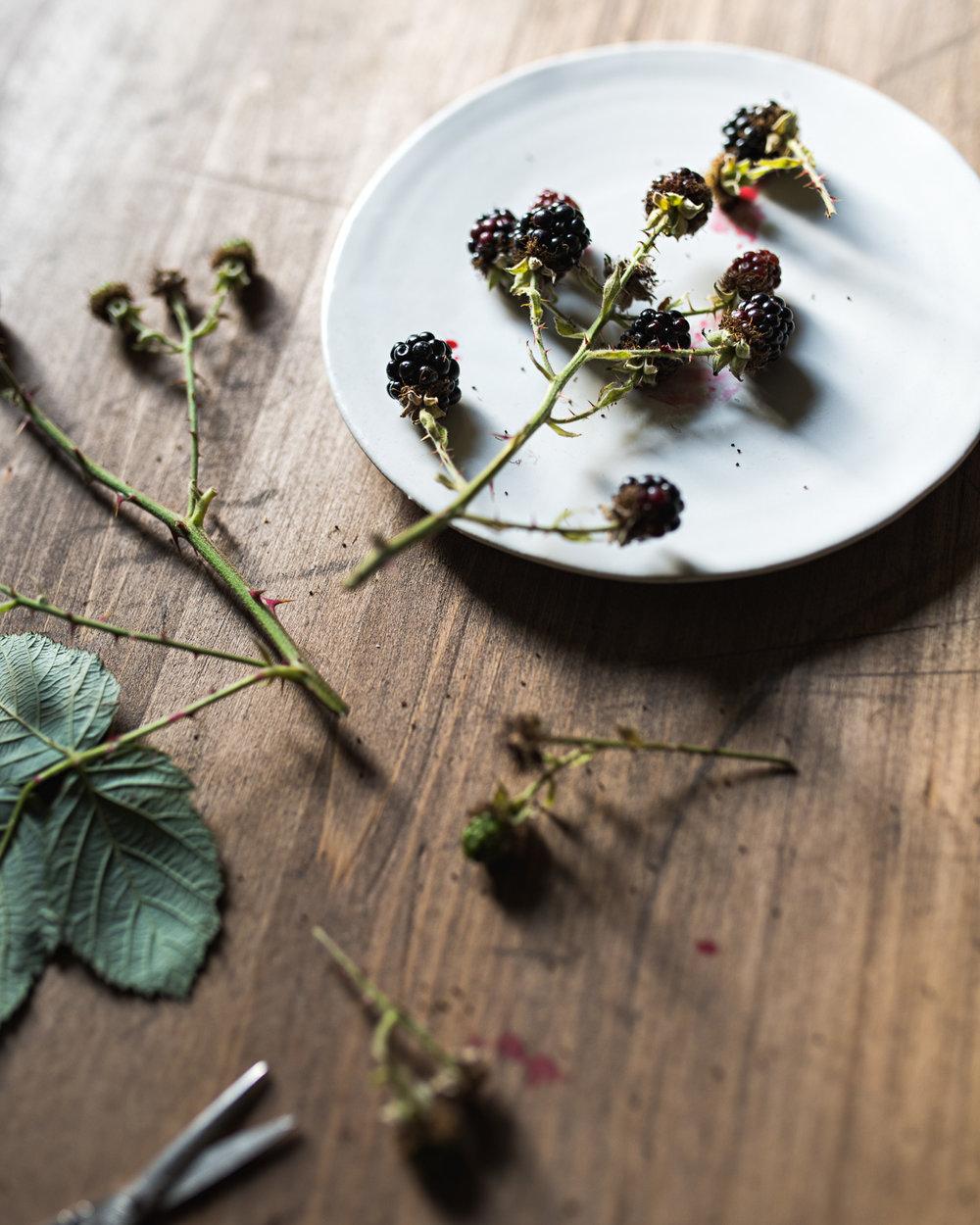 Wild_Blackberries.jpg