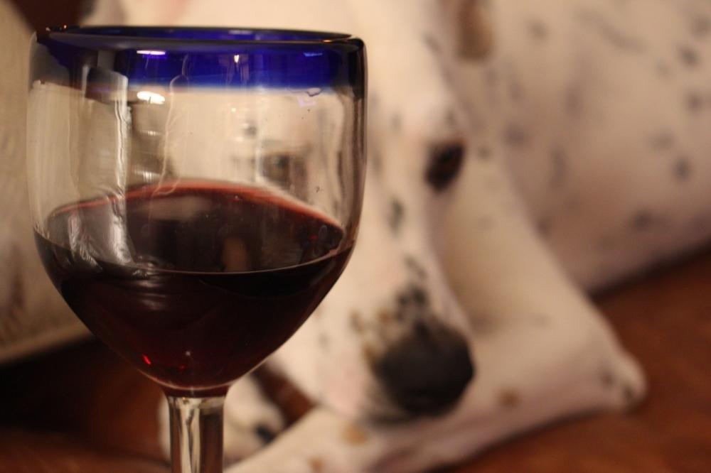 the wine idiot trader joe's wine review block 67 box shiraz syrah