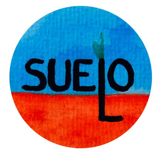 Suelo / Soil