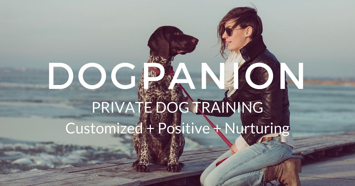 Dogpanion - Puppy Boarding School - Dogpanion Private Dog