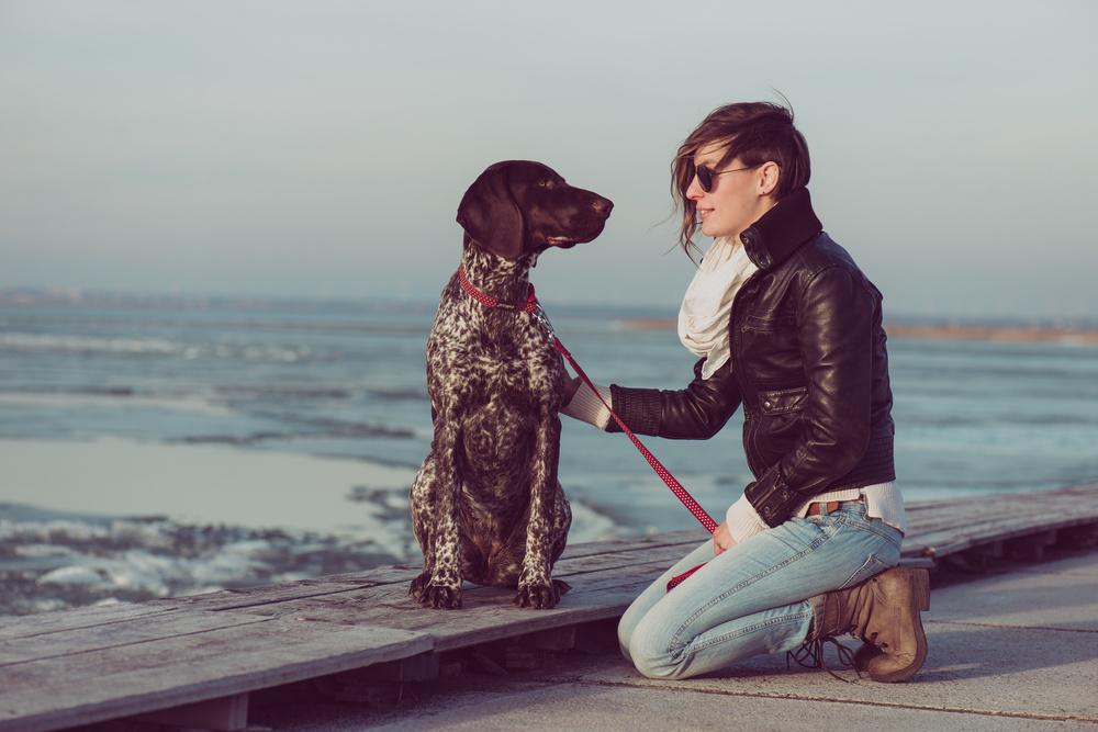 Dogpanion Dog Training
