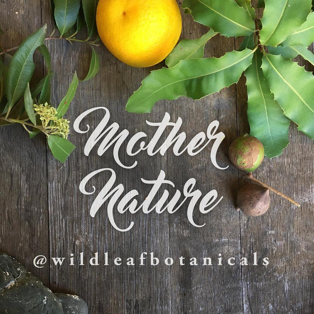 wildleafbotanicals_announcement.jpg