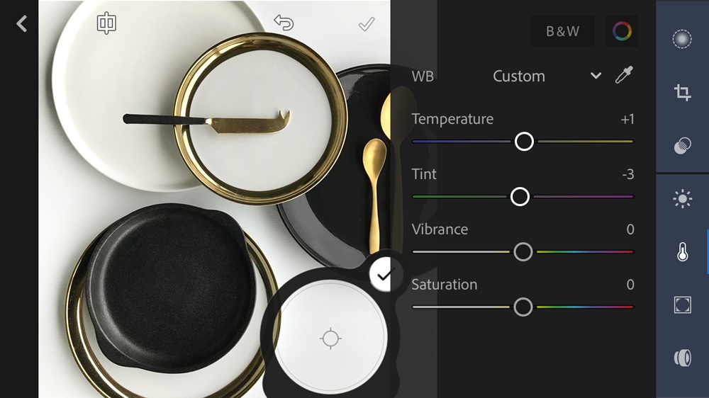 Pictured: The custom White Balance eyedropper tool to ensure your white tones have the perfect temperature and tint.