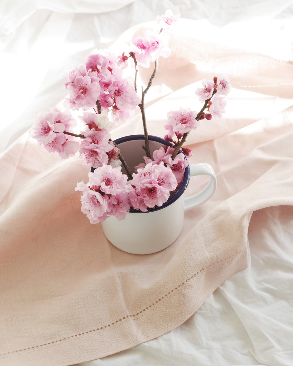 hygge nature spring cherry blossom