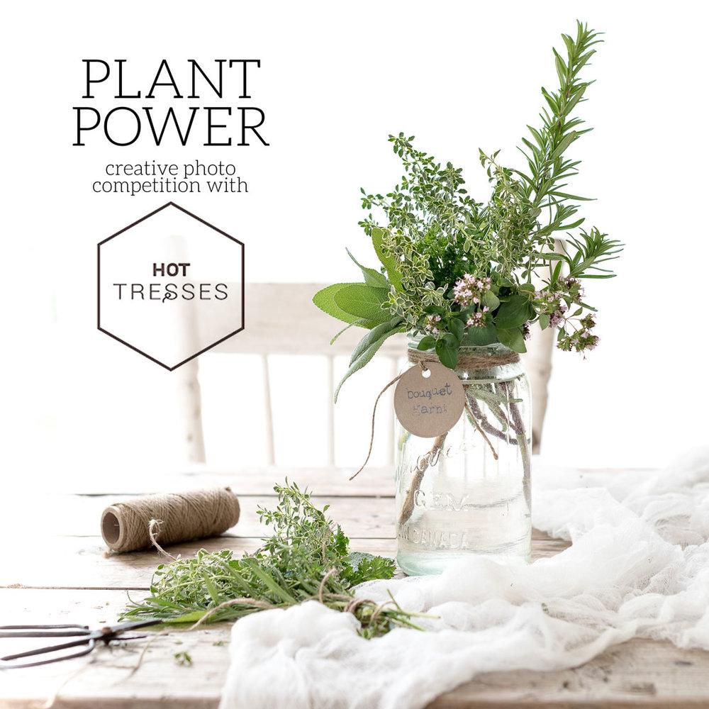 Plant Power Challenge Theme.jpg