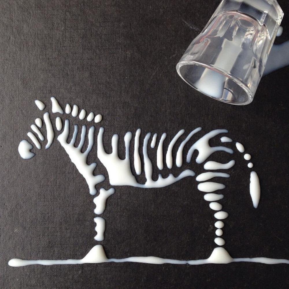 Aravis zebra.jpg