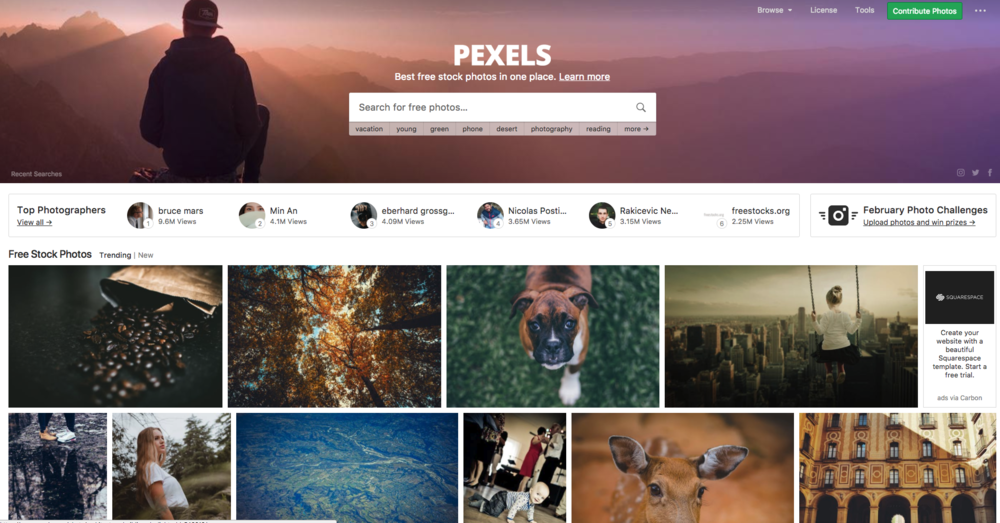 Free stock image sites like Pexels can help you source the right images for your site