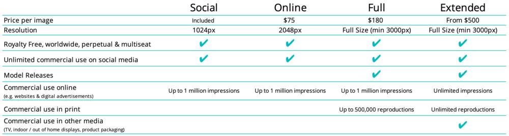 Visual content licensing global