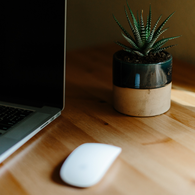 Image of computer, mouse and house plant for Of Larks theology blog for women