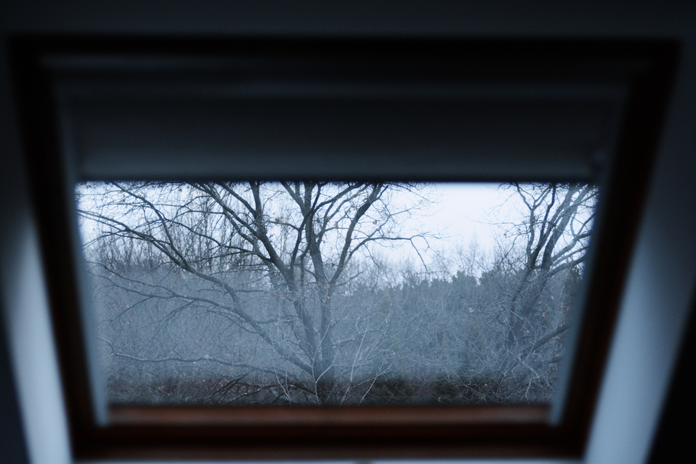 Image of trees during winter through a window--suffering and dissatisfaction in this world.
