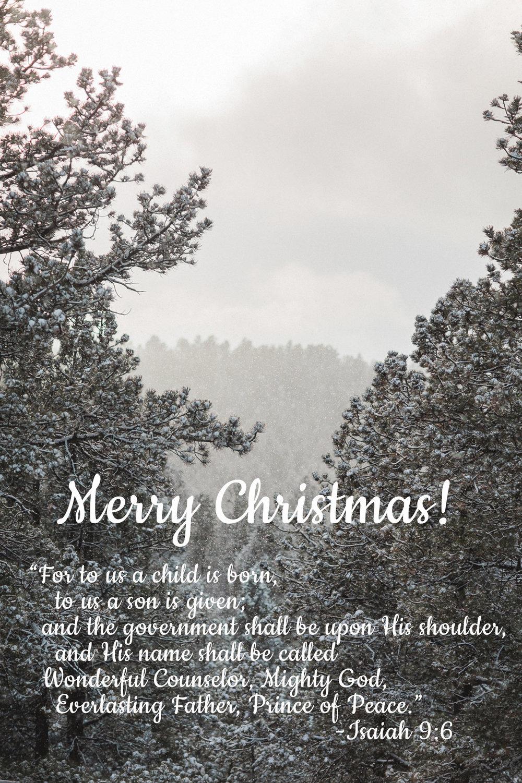 merry-christmas-of-larks-theology-blog-for-women