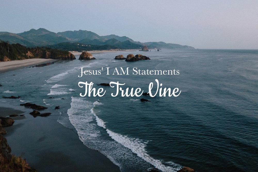 I AM the True Vine, Jesus' I AM statements