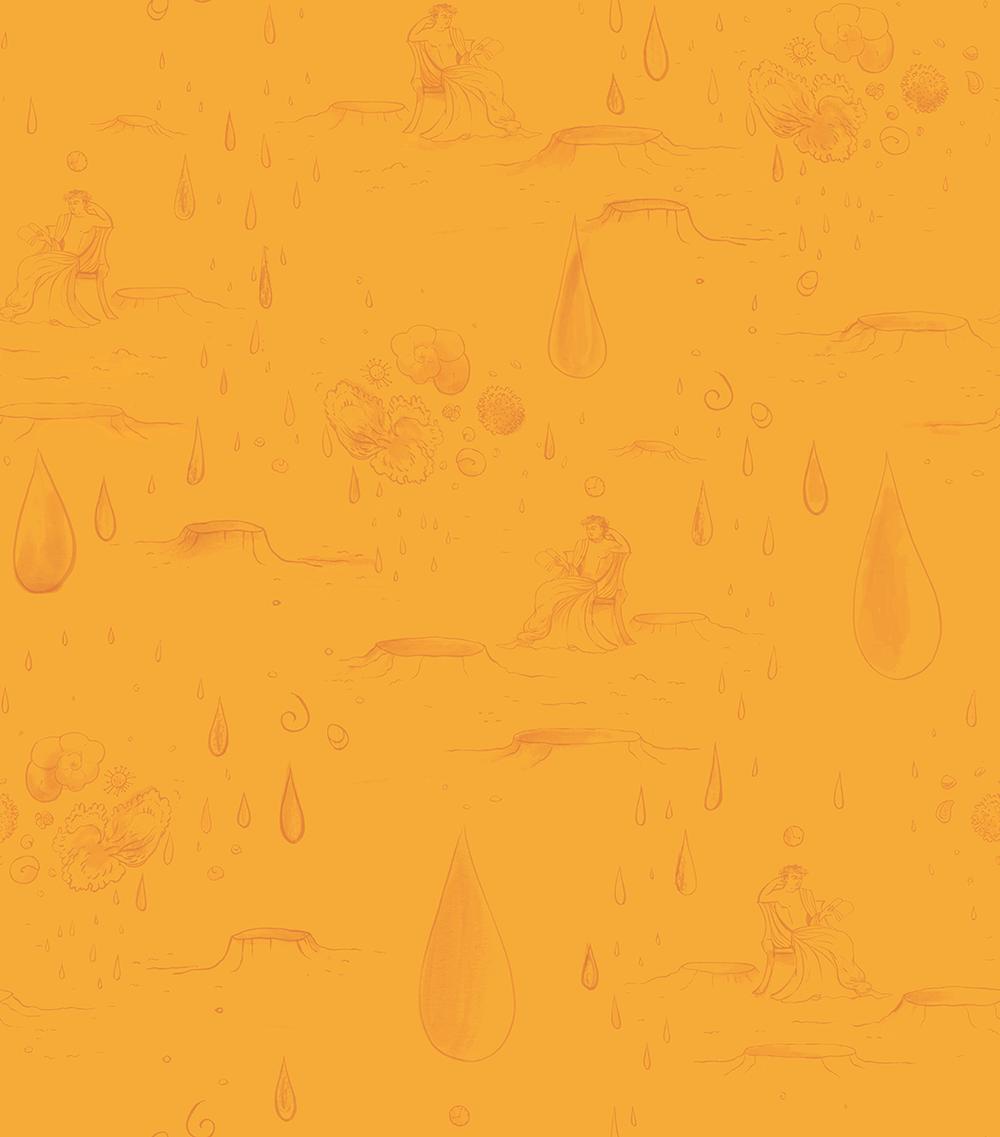 petcoke wallpaper for web.png
