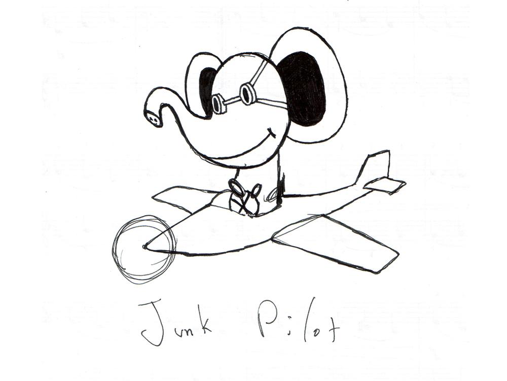 Junk Pilot