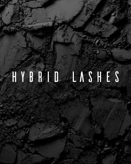 hybrid.png