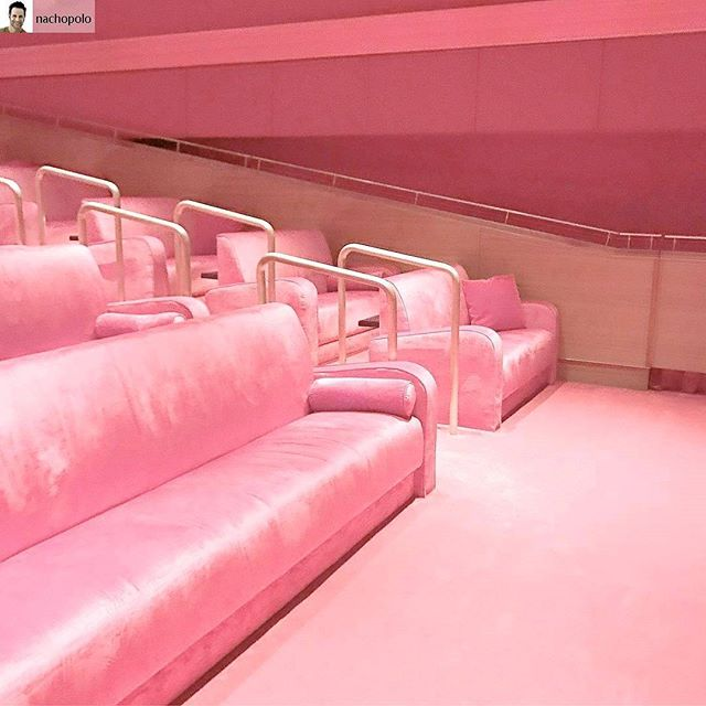 Pink Velvet Dreams 😍 Colour dreaming and planning 💕 #yes #definitely #pinkvelvet #iwanttolivehere #pink #thinkpink #velvetluxe #cinemadreams #pinkgoals #velvetcrush #allthebestthings #roomgoals #howdoigetthere #colourinspo #palette #heaven . #Repost from @nachopolo with @regram.app