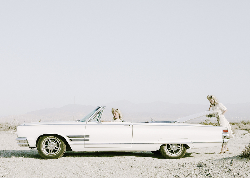 The Trunk © Anja Niemi.jpg