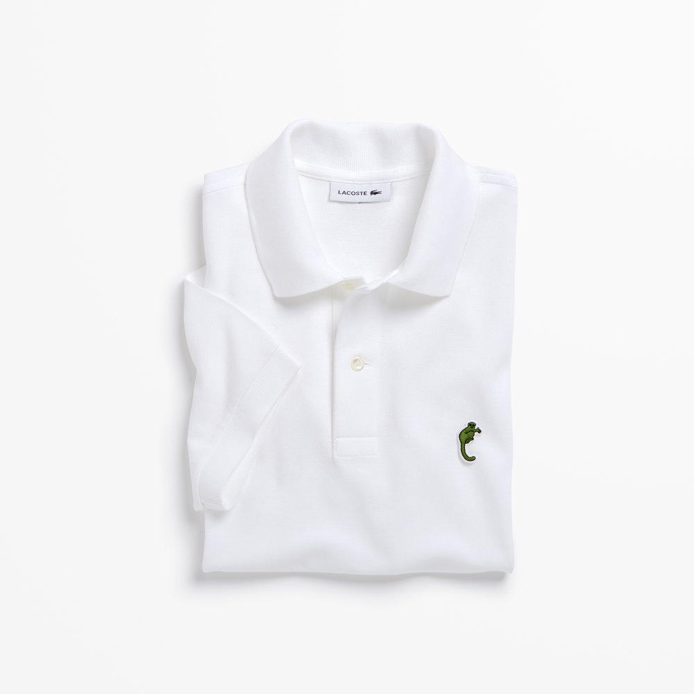 03. LACOSTE X SAVE OUR SPECIES (UICN)_THE NORTHERN SPORTIVE LEMUR_PH4654.jpg
