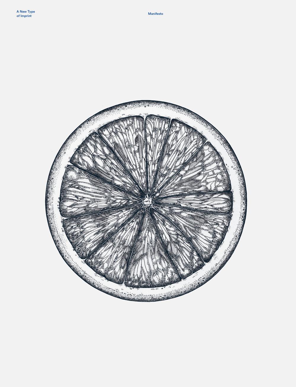 circles5.jpg