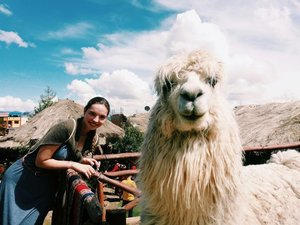 Co-founder Julia with her friend, the Alpaca