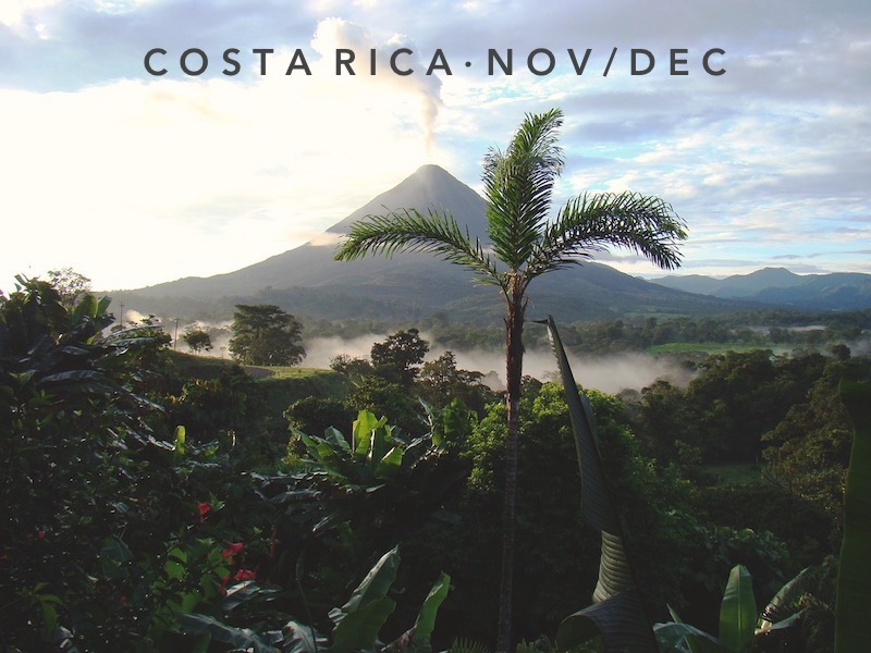 Nov 16 - Dec 14  | Santa Teresa, Costa Rica