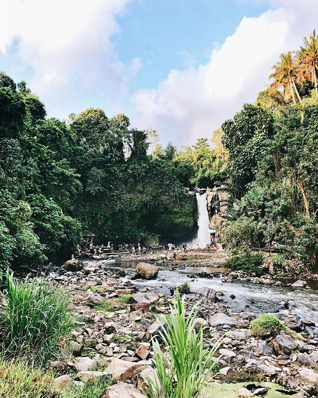 We're chasing down all the beautiful waterfalls of Bali and are happy to check Tegenungan off our list ✅ ----- What an absolute beauty! Grateful to be here with the whole tribe 🙌 👩‍👩‍👧‍👦