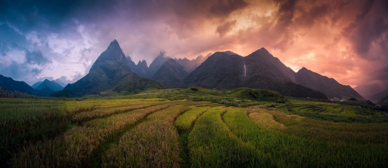 Rice-fields-on-terraced-with-Mount-Fansipan-background-at-sunset-in-Lao-Cai-Northern-Vietnam.-Fansipan-is-a-mountain-in-Vietnam-the-highest-in-Indochina-2-768x333.jpg