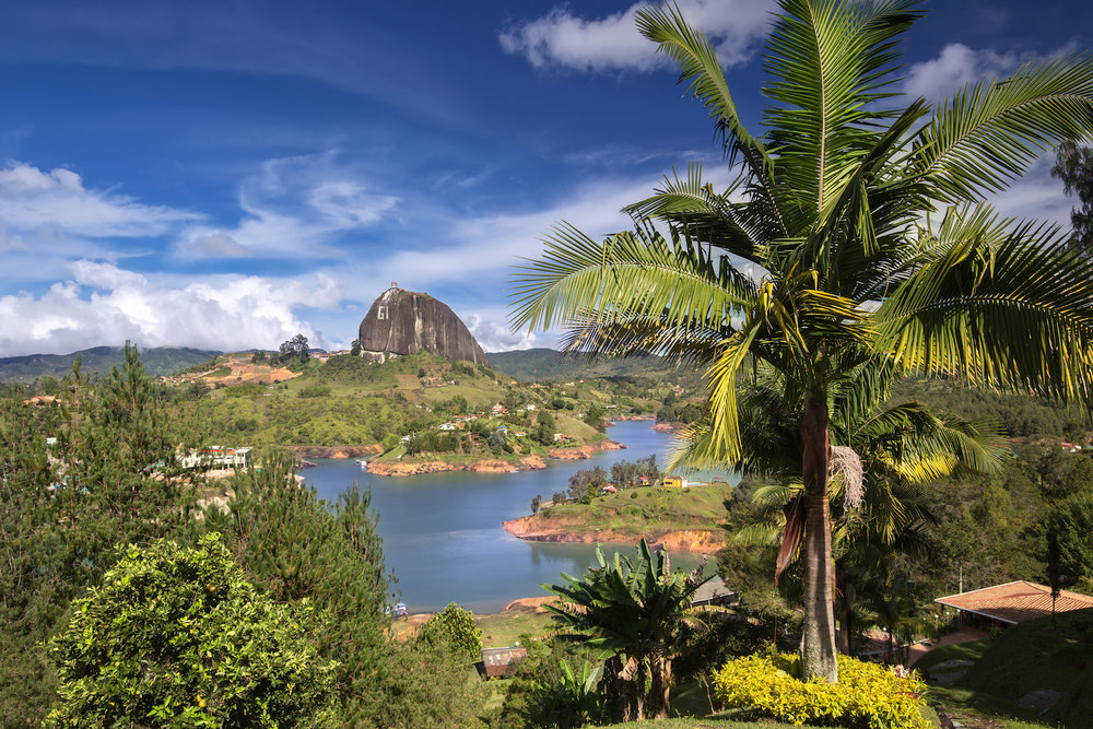 guatape-palm-medellin-colombia-wifi-tribe-digital-nomad-retreat-remote-work-travel-program-2019-513620038.jpg