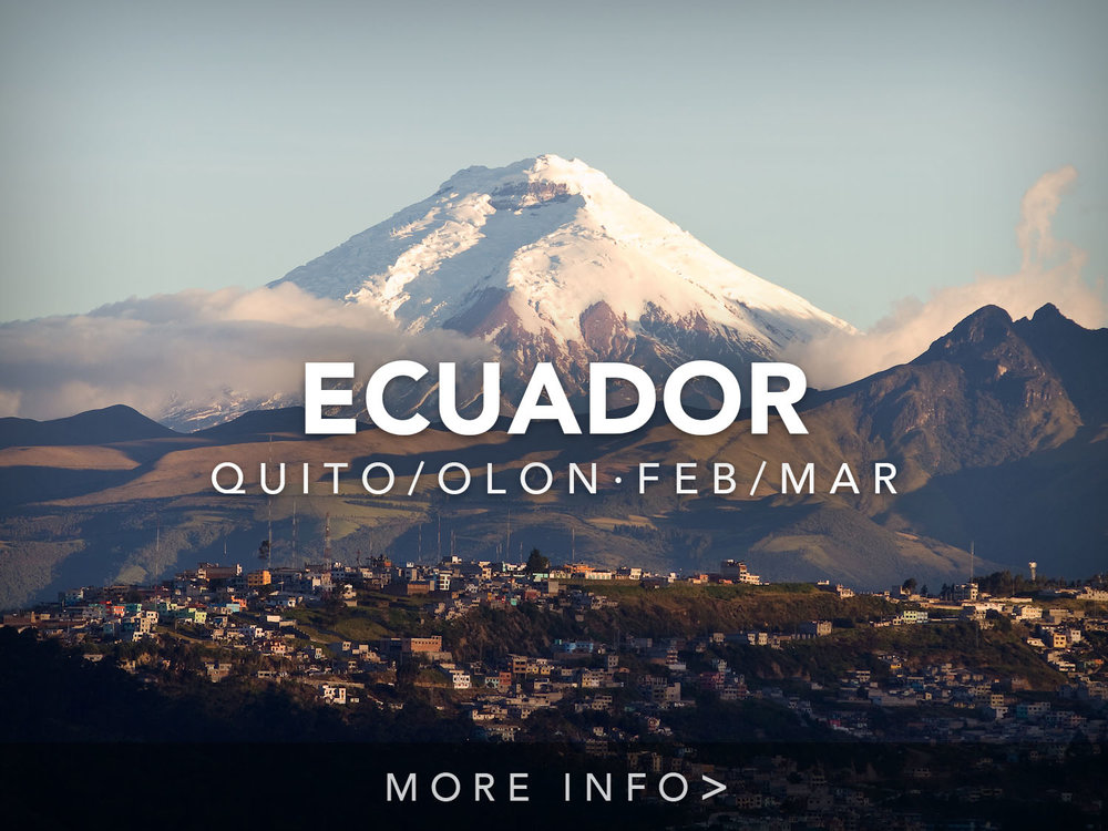 sa-ecuador-quito-south-america-wifi-tribe-digital-nomad-retreat-remote-work-travel-program-2019-95394841.jpg