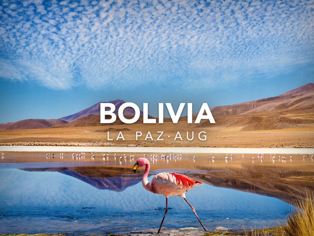 sa-bolivia-la-paz-flamenco-south-america-wifi-tribe-digital-nomad-retreat-remote-work-travel-program-2019-234994054.jpg