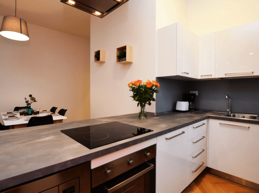 prague-house-coliving-coworking-wifi-tribe-2019-kitchen.jpg