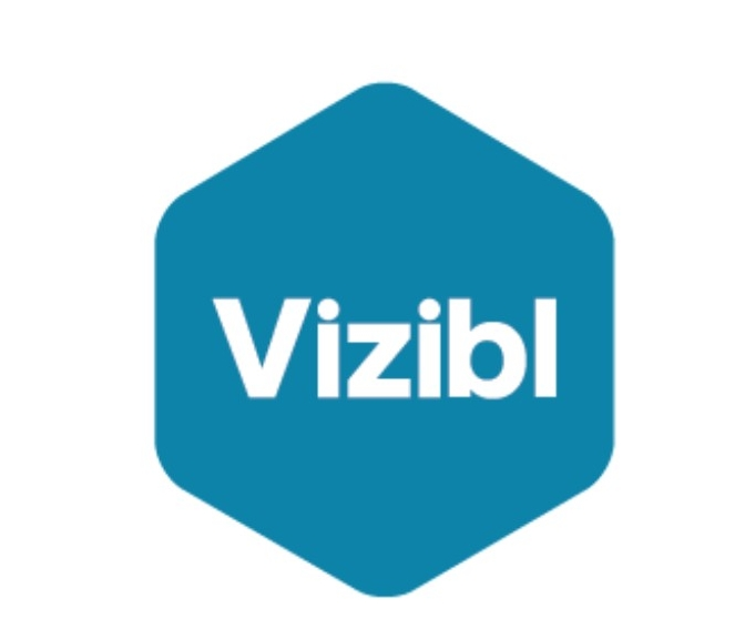 Blogging -  Vizibl.co -