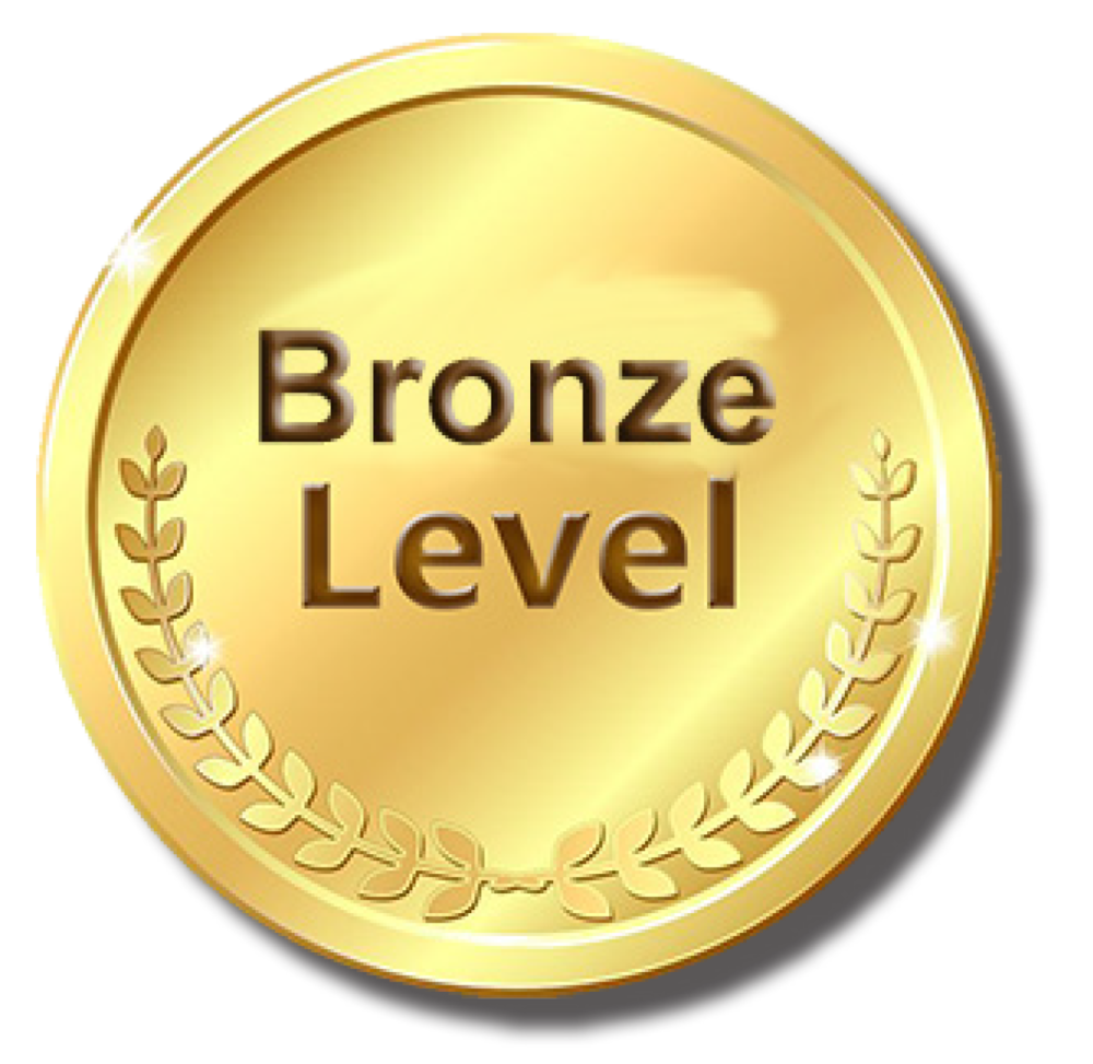 Image of Bronze Level icon