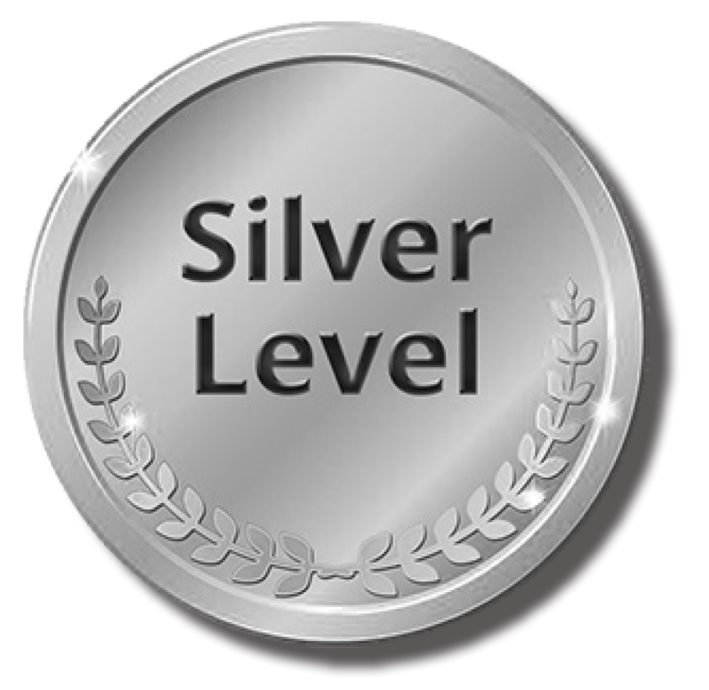 Image of Silver Level icon