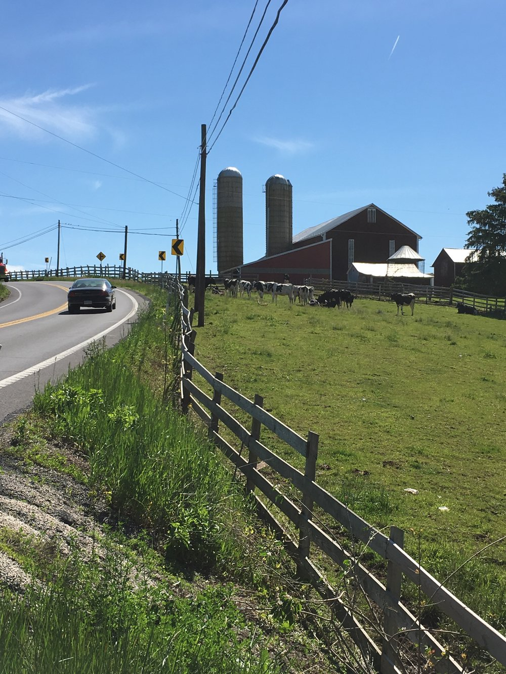 Elliottsburg farm, Perry County