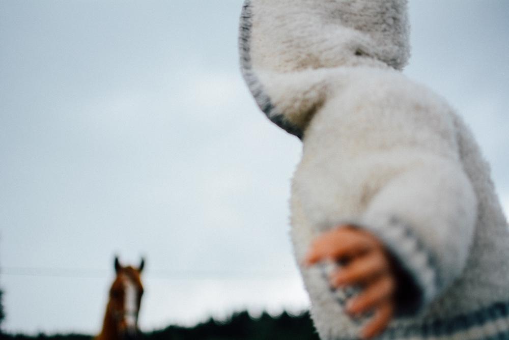 06-20-Mama-Katrin-horses (40 of 39)_LR edited_FB.jpg