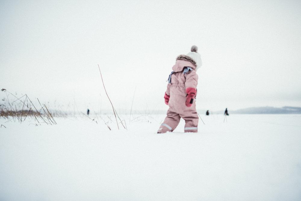 2017-01-15-Frozen Kallavesi-Muehle-10_LR edited_web.jpg