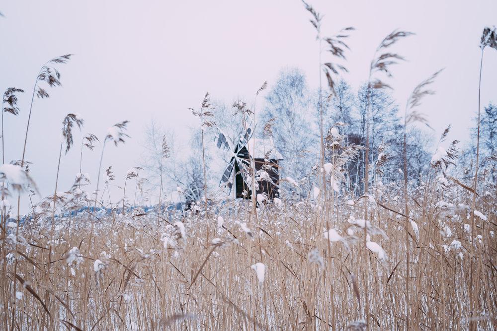 2017-01-15-Frozen Kallavesi-Muehle-55_LR edited_web.jpg