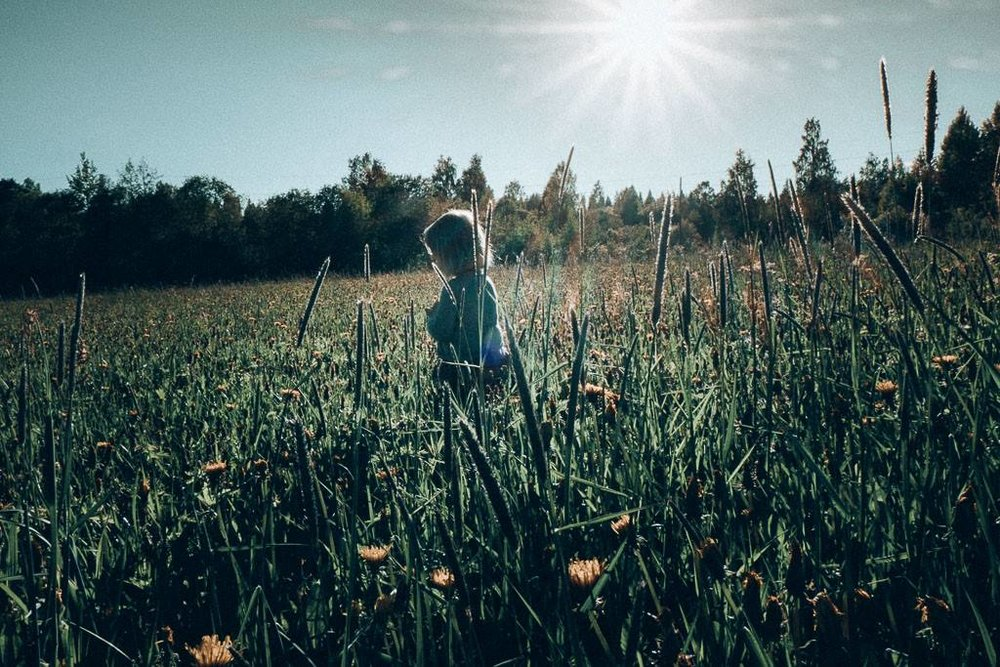 girl in meadow in backlight