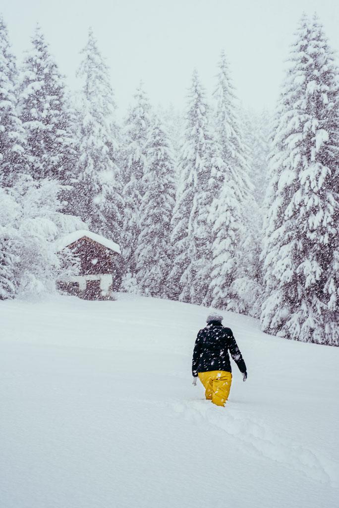2018-01-04-snowstorm-Tanya-Hochmoor-10_LR edited_web.jpg