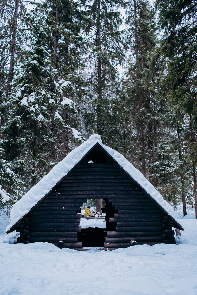 2018-03-10-Suovo-Palonen-campfire-21_LR edited_web.jpg