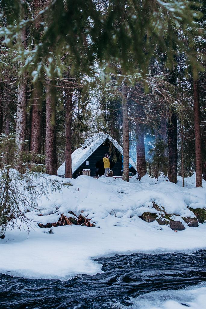 2018-03-10-Suovo-Palonen-campfire-93_LR edited_web.jpg