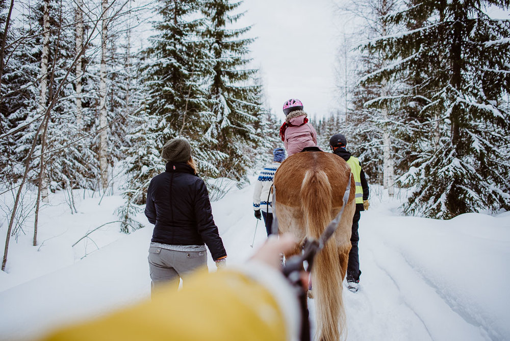 2018-03-24-horse-skiing-19_LR edited_web.jpg